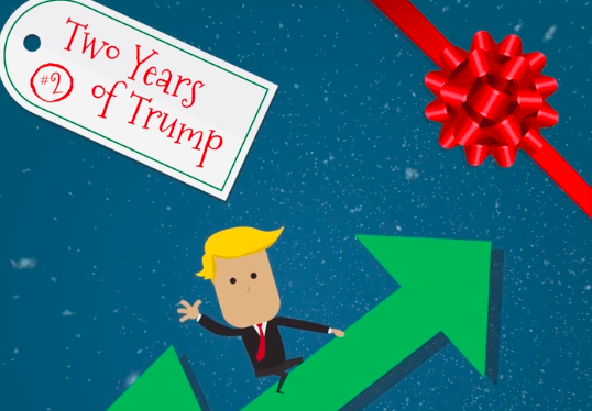 On The Second Day Of Christmas My Country Gave To Me: Two Years Of Trump